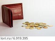 Пустой кошелек и монеты. Стоковое фото, фотограф Игорь Мухлаев / Фотобанк Лори