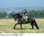 Девушка едет по полю на вороной лошади на размытом фоне города. Стоковое фото, фотограф Елена Зенкович / Фотобанк Лори