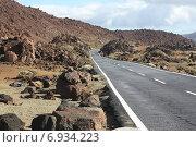 Дорога к вулкану Тейде. Стоковое фото, фотограф Екатерина Рыжова / Фотобанк Лори