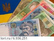Купить «Украинские деньги на фоне национального флага», фото № 6936251, снято 27 января 2015 г. (c) Момотюк Сергей / Фотобанк Лори
