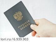 Купить «Трудовая книжка в руке», фото № 6939903, снято 28 января 2014 г. (c) Sashenkov89 / Фотобанк Лори