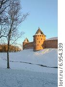 Купить «Новгородский Кремль на закате», фото № 6954339, снято 20 января 2015 г. (c) Зезелина Марина / Фотобанк Лори