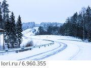 Дорога в зимнем лесу (2010 год). Стоковое фото, фотограф Оксана Алексеенко / Фотобанк Лори