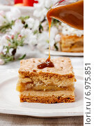 Купить «Piece of apple cake with whipped cream. Party dessert», фото № 6975851, снято 17 мая 2019 г. (c) BE&W Photo / Фотобанк Лори
