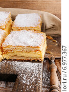 Купить «A Polish cream pie made of two layers of puff pastry, filled with whipped cream. Party dessert», фото № 6977367, снято 15 августа 2018 г. (c) BE&W Photo / Фотобанк Лори