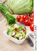 Купить «Spring vegetables salad - healthy food», фото № 6977847, снято 18 сентября 2018 г. (c) BE&W Photo / Фотобанк Лори
