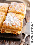 Купить «A Polish cream pie made of two layers of puff pastry, filled with whipped cream. Party dessert», фото № 6979227, снято 15 августа 2018 г. (c) BE&W Photo / Фотобанк Лори