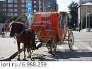 Красная карета с позолотой для прогулок с запряженной лошадью в ожидании клиентов (2014 год). Редакционное фото, фотограф Николай Новиков / Фотобанк Лори