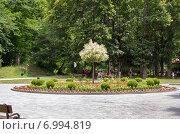 Купить «Центральная часть парка развлечений в Боржоми. Грузия», фото № 6994819, снято 6 июля 2013 г. (c) Евгений Ткачёв / Фотобанк Лори
