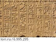 Купить «Иероглифы в древнем египетском храме», фото № 6995295, снято 5 декабря 2014 г. (c) Михаил Коханчиков / Фотобанк Лори