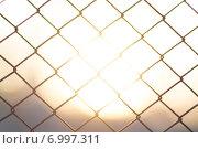 Закат в сетке. Стоковое фото, фотограф Сергей Кухарёнок / Фотобанк Лори