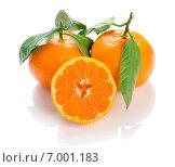 """Плоды японского мандарина уншиу """"Сацума"""" (Citrus unshiu) на белом фоне. Стоковое фото, фотограф Алексей Копытько / Фотобанк Лори"""