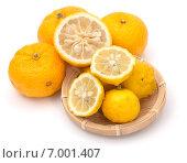 Плоды ханаюдзу (Citrus hanayu) и юдзу (Citrus ichangensis x reticulata), видов японского лимона. Стоковое фото, фотограф Алексей Копытько / Фотобанк Лори