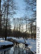 Лесная речка. Стоковое фото, фотограф Евгений Виноградов / Фотобанк Лори