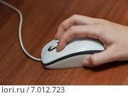 Купить «Женская рука на компьютерной мышке лежащей на столе», эксклюзивное фото № 7012723, снято 9 февраля 2015 г. (c) Игорь Низов / Фотобанк Лори