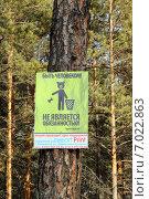 Купить «Табличка-напоминание о необходимости убирать за собой мусор в лесу», фото № 7022863, снято 17 февраля 2015 г. (c) Виталий Матонин / Фотобанк Лори