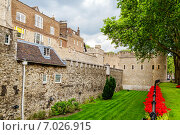 Купить «Вид на Тауэрский замок. Лондон, Англия», фото № 7026915, снято 26 июня 2013 г. (c) Andrei Nekrassov / Фотобанк Лори