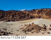 Купить «Живописный вид на вулкан Тейде, Тенерифе. Канарские острова», фото № 7034567, снято 17 декабря 2014 г. (c) Alexander Tihonovs / Фотобанк Лори