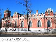 Купить «Фрагмент Петровского путевого дворца», фото № 7051363, снято 17 февраля 2015 г. (c) Данила Васильев / Фотобанк Лори