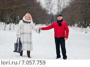 Купить «Счастливая пара. Мужчина и женщина среднего возраста стоят взявшись за руки на аллее в зимнем парке», эксклюзивное фото № 7057759, снято 23 февраля 2015 г. (c) Игорь Низов / Фотобанк Лори