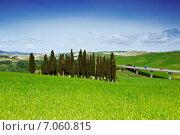 Типичный Тосканский пейзаж, Италия (2014 год). Стоковое фото, фотограф Наталья Волкова / Фотобанк Лори