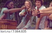 Купить «In high quality format happy friends in the park having a picnic », видеоролик № 7064835, снято 17 февраля 2019 г. (c) Wavebreak Media / Фотобанк Лори