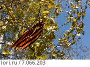 Георгиевская ленточка развевается на ветру. Стоковое фото, фотограф Ольга Литвинцева / Фотобанк Лори