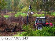 Уборка территории от кустарника и мелких деревьев. Стоковое фото, фотограф Svetlana Mihailova / Фотобанк Лори