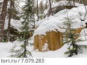 Купить «Замерзший водопад в зимнем лесу», фото № 7079283, снято 21 февраля 2015 г. (c) Евгений Ткачёв / Фотобанк Лори