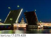 Купить «Кунсткамера. Разведенный дворцовый мост. Санкт-Петербург», эксклюзивное фото № 7079439, снято 5 июня 2011 г. (c) Александр Щепин / Фотобанк Лори