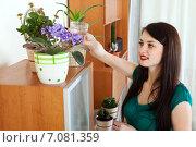 Купить «woman watering flowers in pots at home», фото № 7081359, снято 16 августа 2018 г. (c) Яков Филимонов / Фотобанк Лори