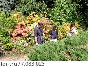 Купить «Весеннее цветение рододендрона в Аптекарском огороде. Москва», фото № 7083023, снято 24 мая 2014 г. (c) Илюхина Наталья / Фотобанк Лори