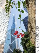 Сады Гонконга рядом с небоскребами (2015 год). Стоковое фото, фотограф Марат Лялин / Фотобанк Лори