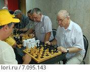 Купить «Любительский турнир по шахматам», фото № 7095143, снято 7 августа 2010 г. (c) Владимир Горощенко / Фотобанк Лори
