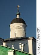 Главка церкви Илии Пророка (Псков) (2014 год). Стоковое фото, фотограф Самохвалов Артем / Фотобанк Лори