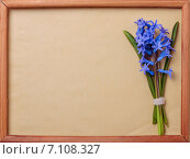 Место для текста на бежевой бумаге в деревянной раме и букет синих гиацинтов. Стоковое фото, фотограф Marina Kutukova / Фотобанк Лори