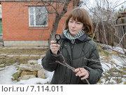 Девушка осматривает ветви молодой яблони в поисках вредителей. Стоковое фото, фотограф Марина Славина / Фотобанк Лори