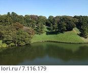Пейзаж летнего озера. Стоковое фото, фотограф Светлана Давыдова / Фотобанк Лори