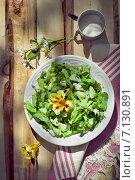 Салат из огурцов с листьями салата и вареными яицами. Стоковое фото, фотограф Светлана Витковская / Фотобанк Лори