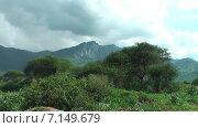 Купить «Горный пейзаж в кратере Нгоронгоро. Танзания. Африка», видеоролик № 7149679, снято 3 декабря 2014 г. (c) Кекяляйнен Андрей / Фотобанк Лори