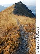 Купить «Тропа на гору в западном Тянь-Шане», фото № 7160579, снято 1 сентября 2007 г. (c) Elizaveta Kharicheva / Фотобанк Лори