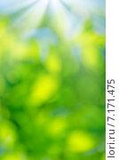 Купить «Природный фон из размытых зеленых листьев», фото № 7171475, снято 5 июля 2014 г. (c) Икан Леонид / Фотобанк Лори