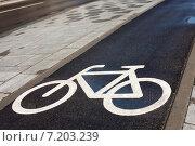 Купить «Обозначение велосипедной дорожки», фото № 7203239, снято 27 марта 2015 г. (c) Галина Лукьяненко / Фотобанк Лори