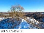 Купить «Природа города Брянск», фото № 7207515, снято 6 января 2015 г. (c) Александр Овчинников / Фотобанк Лори