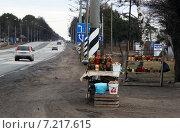 Купить «Торговля на обочине трассы М-10», фото № 7217615, снято 2 апреля 2015 г. (c) Данила Васильев / Фотобанк Лори