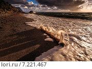 Штормовое предупреждение. Стоковое фото, фотограф Фёдор Ветров / Фотобанк Лори