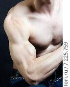 Мускулистый мужчина показывает бицепс. Стоковое фото, фотограф Петрова Инна / Фотобанк Лори