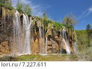 Купить «Croatia, Plitvicka Jezera, Plitvice Lakes National Park, Plitvice Lakes National Park», фото № 7227611, снято 19 августа 2019 г. (c) BE&W Photo / Фотобанк Лори