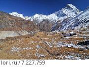 Купить «Nepal, Annapurna Conservation Area, Trek to Annapurna Base Camp in Nepal Himalaya», фото № 7227759, снято 20 июля 2019 г. (c) BE&W Photo / Фотобанк Лори
