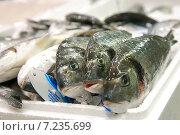 Свежая рыба на базаре (2015 год). Редакционное фото, фотограф Maria Siurtukova / Фотобанк Лори